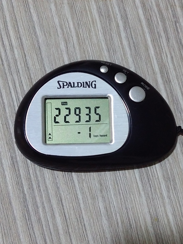 My pedometer reading. That's the number of steps I took for the entire day.