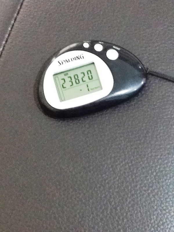My pedometer reading post-raceday. Perhaps I should train for a marathon now?!